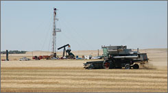 A combine cuts wheat near an oil well in Tioga, N.D., in August. An oil boom in the state is turning some farmers into millionaires. Sen. John McCain wants to increase domestic oil drilling.