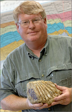 Jim Westgate, a trained paleontologist and researcher, said he believes the fossil tooth he discovered in Ike-damaged debris is from a Columbian mammoth.