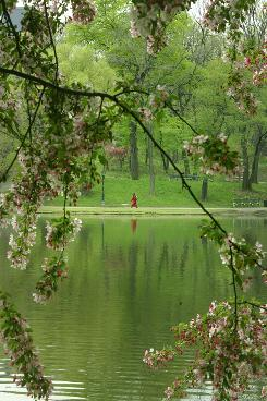 A woman in red walks along the edge of Central Park's Harlem Meer in New York.