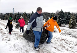 John Stites, front left, and his wife, Kate, back right, take a Christmas tree they cut with their children at the brewery Hill Christmas Trees farm near Le Sueur, Minn. as Christmas tree sales appear to remain steady despite the economy.