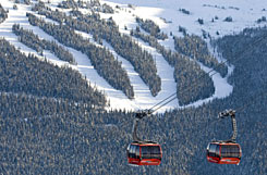 Ski runs can be seen behind Whister gondolas on Thursday.