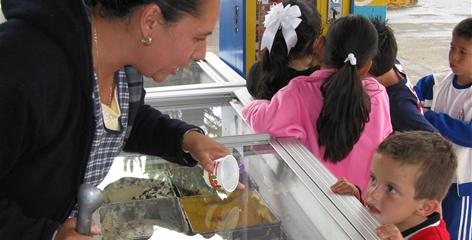 Vendor Angelica Guerrero serves a customer Sept. 22 in Tocumbo, Mexico. Michoacan ice cream comes in unusual flavors.