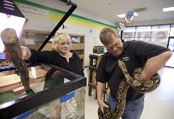 Jungleland pet store owner Audrey Frankowski and her brother and store manager, Bill Allen, play with Betty the boa constrictor. The Mundelein, Ill., store is closing after 21 years in business.