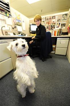 Amy Fisher sits in her cubicle with dog Callie at Replacements Ltd. in Greensboro, N.C.