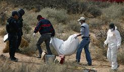 Mexican federal police carry a corpse found in an unmarked grave in Juarez, Mexico, on Saturday. At least five bodies were found.