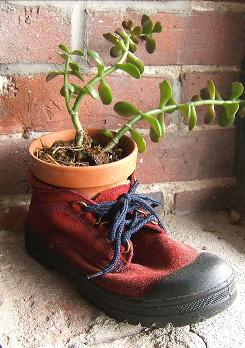 One of the suggestions in the green activity book What Can You Do with an Old Red Shoe? is to make a planter.