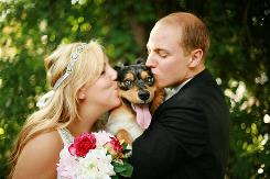 Kaycee and John English kiss their Australian shepherd puppy Bowser on their wedding day in New Jersey last year.
