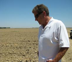 Sections of Todd Allen's farm are only dirt in even rows. His says he hasn't planted on that land this year because he can't get water for it.
