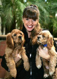"Dog trainer Victoria Stilwell, host of Animal Planet's ""It's Me or the Dog,"" holds springer spaniels that belong to her clients. She's also written two books and is a regular columnist for Dog World, American Dog and Dogs Today."