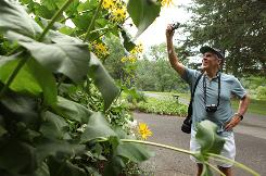 Early Alzheimer's patient Bob Blackwell photographs the flowers and wildlife at Meadowlark Botanical Gardens in Vienna, Va., Aug. 12.