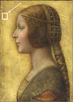 A yellow box in the upper left hand corner highlights a fingerprint art experts believe belongs to Leonardo da Vinci.