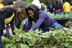 First lady Michelle Obama's vegetable garden is ready for the winter.