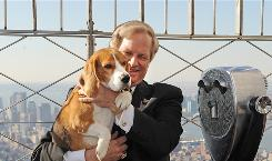 Westminster Kennel Club 2008 Best in Show Champion Uno, a beagle, gets a view of Manhattan from the Empire State Building with David Frei, co-host of the TV broadcast of the dog show.