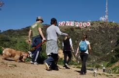 """Hikers near the Hollywood sign covered with banner during a drive for $12.5 million to buy the land around it. The banners read, """"Save the peak."""""""