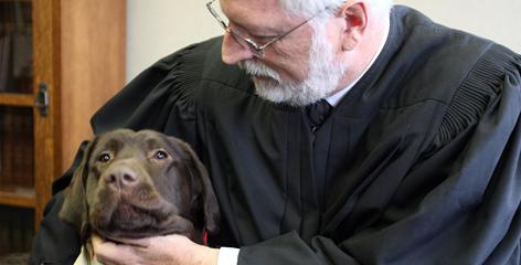 Judge Brian MacKenzie holds Amos, who is being trained as a courthouse dog in Michigan to help children who have to testify. This program is based on one in the state of Washington.