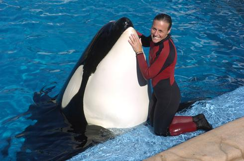 seaworld trainer