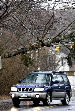 Wind uprooted this tree in Hampton, N.H. A winter storm with hurricane-force winds left many area New Hampshire towns without power.