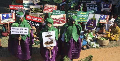 Farmers hold signs as Greenpeace activists dressed as Bt brinjal genetically modified eggplants protest during Indian Environment Minister Jairam Ramesh's visit to attend a public hearing on the crop at the Central Research Institute for Dryland Agriculture in Hyderabad, India. India halted the commercial release of the world's first genetically engineered eggplant. Ramesh, said that given the lack of consensus within the scientific community and the pitch of public opposition, further study was needed to guarantee consumer safety.