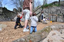 Children get some supervised outdoor time in the natural play area at SPARK, a therapeutic center for children with medical needs, in Mattapan, Mass., one of several recently built examples of the affordable, low-maintenance, eco-friendly alternative to playgrounds that use a lot of plastic.
