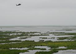A National Guard helicopter flies over Louisiana wetlands in the path of spreading oil from the BP Deepwater Horizon platform disaster.