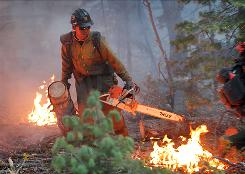 James Honanie, of the Flagstaff Hot Shots, removes fuel from the path of the Schultz Fire Monday in Flagstaff, Ariz.
