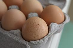 USA TODAY reported Thursday that by the end of July health officials in California and Minnesota had identified Wright County Egg as a supplier to eight restaurants that had illness clusters.