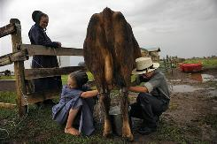 Susan Miller, left, watches her daughter Elaine, 12, and son Myron, 11, milk the family cow on their homestead between Manassa and Romeo, Colo., in July. The family moved to the San Luis Valley five years ago to find a better life than they had in Montana.