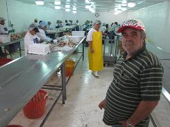 Workers at the Southern Aire Seafood crab processing plant in Irvington, Ala., scoop out meat from crabs and put it into containers. Tony Lyons, owner of Southern Aire owner, says its revenue is down 95% since the Gulf oil spill.