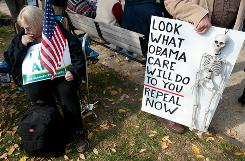 Supporters of the Tea Party protest against Democrats and President Obama on Capitol Hill on Nov.15. The group urged Congress to avoid big government policies and curb spending.