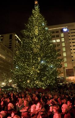 Portland's tree is lit on Pioneer Courthouse square Friday in front of a large  crowd singing holiday music. A Somali-born teenager, Mohamed Osman Mohamud, 19, was arrested just after he dialed a cellphone that he thought would blow up a van laden with explosives in the square.