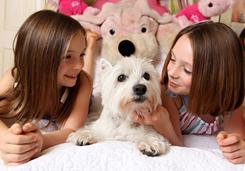 Sisters Campbell Craft, 7, left, and 9-year-old Carson, with dog Barclay, used their birthdays to give to charity.