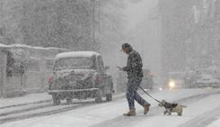 A pedestrian walks a dog during a snowfall in central London on Saturday. Plunging temperatures and heavy snow brought large areas of Britain to a standstill. London's Gatwick Airport closed its runway and British Airways cancelled flights at Heathrow.