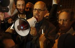 Mohamed ElBaradei, the most visible spokesman for a coalition of anti-Mubarak groups, addresses a crowd at Tahrir Square in Cairo.