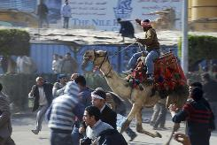 A pro-Mubarak demonstrator rides a camel through an anti-government protest on Wednesday.