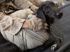 A Marine tends to his