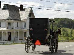 A buggy drives Wednesday on state Route 417 at Five Corners Road just outside of Jasper, N.Y.