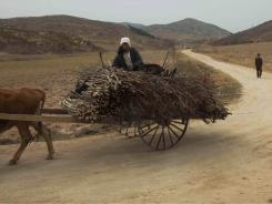 North Korea's perennial food shortage has reached a crisis point in 2011, aid workers say, because of torrential rains, the coldest winter in 60 years and rising food prices.