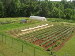 The student farm at Central Carolina Community College's Chatham campus.