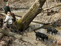 Danielle and Don Wirth sit next to an old Bur Oak that grew up along the creek in their backyard as their dogs Nimbus and Jessie wade in the water. The Bur Oak is very important as food sources for many wildlife species.