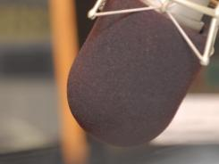 College Radio Day encourages radio stations to tout their role in training students.