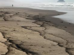 A man walks on a beach stained with fuel oil leaked from the Liberian-flagged container ship Rena in Tauranga, New Zealand, on Tuesday.