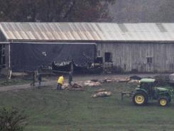 Burial begins at the Muskingum County Animal Farm on Wednesday in Zanesville, Ohio.