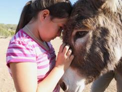 Cheyenne Rondeaux, 9, holds on to Penelope, a rescued burro, at Firelight South Ranch in Alpine, Texas. State officials say the burros are invasive and threaten the area's ecology.