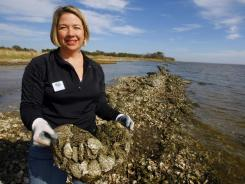 Casi Callaway of Mobile Baykeeper inspects oyster reefs along the western shore of Mobile Bay, Ala. Her group's $100 million initiative would restore 100 miles of oyster reefs in the bay.