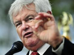Republican presidential candidate Newt Gingrich speaks during a town hall rally in Bluffton, S.C.