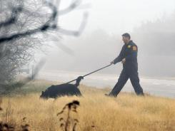 An officer from the Suffolk County Police Department's K-9 Unit uses a dog to search through the brush along the median of Ocean Parkway, in Long Island, N.Y.