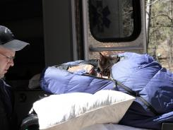 Margaret Page and her cat are loaded into an ambulance inside the Gila National Forest on Wednesday.