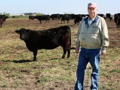 Cattle producer Dave Nichols is photographed Friday on his Iowa ranch. He says the beef industry's negative public image has been a struggle.