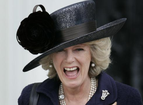 The announcement that Camilla has been made a Dame Grand Cross comes on the