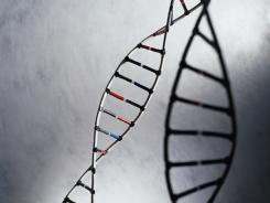 Study finds that exposure to violence can cause changes in DNA leading to seven to 10 years of premature aging.